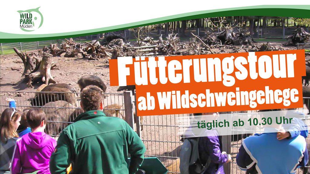 Fütterungstour ab Wildschweingehege im Wildpark Müden