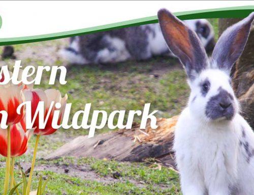 Ostern im Wildpark Müden am 21. und 22. April 2019