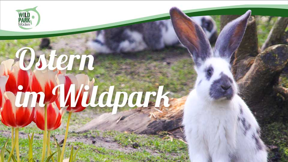 OsternimWildpark
