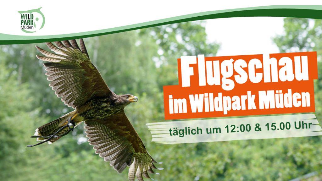 Flugschau Wildpark Müden