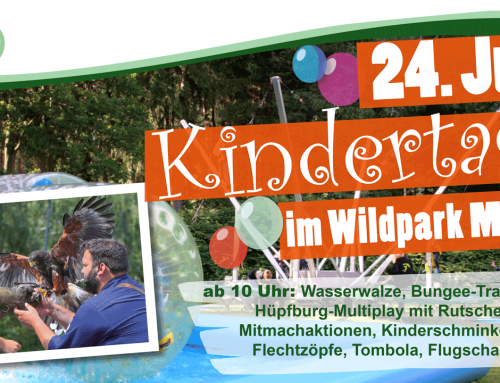 Kindertag im Wildpark Müden am 24.06.2018
