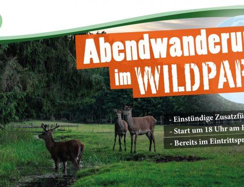 Abendwanderung 2018 im Wildpark Müden