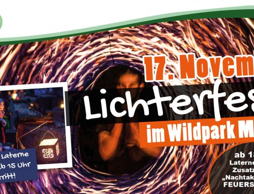 Lichterfest am 17.11.2018