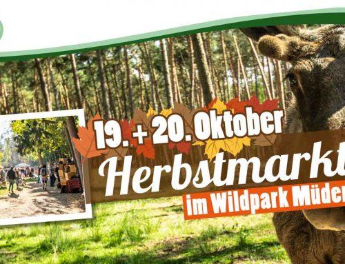 Herbstmarkt im Wildpark Müden am 19. & 20. Oktober 2019