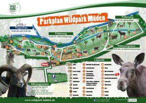 Wildpark Müden Lageplan Parkplan