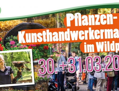 Pflanzen- und Kunsthandwerkermarkt am 30. bis 31. März 2019