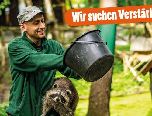 Tierpfleger/in – Zoo (m/w/d)