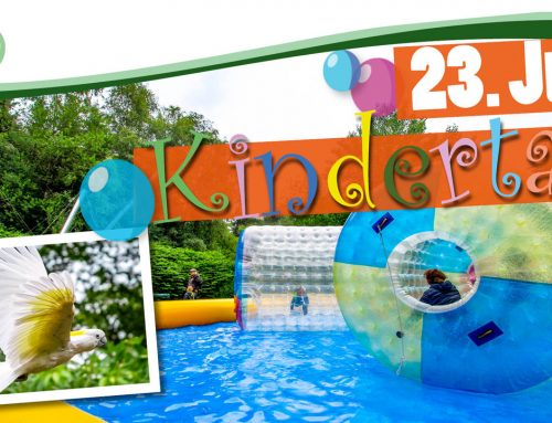 Kindertag im Wildpark Müden am 23. Juni 2019