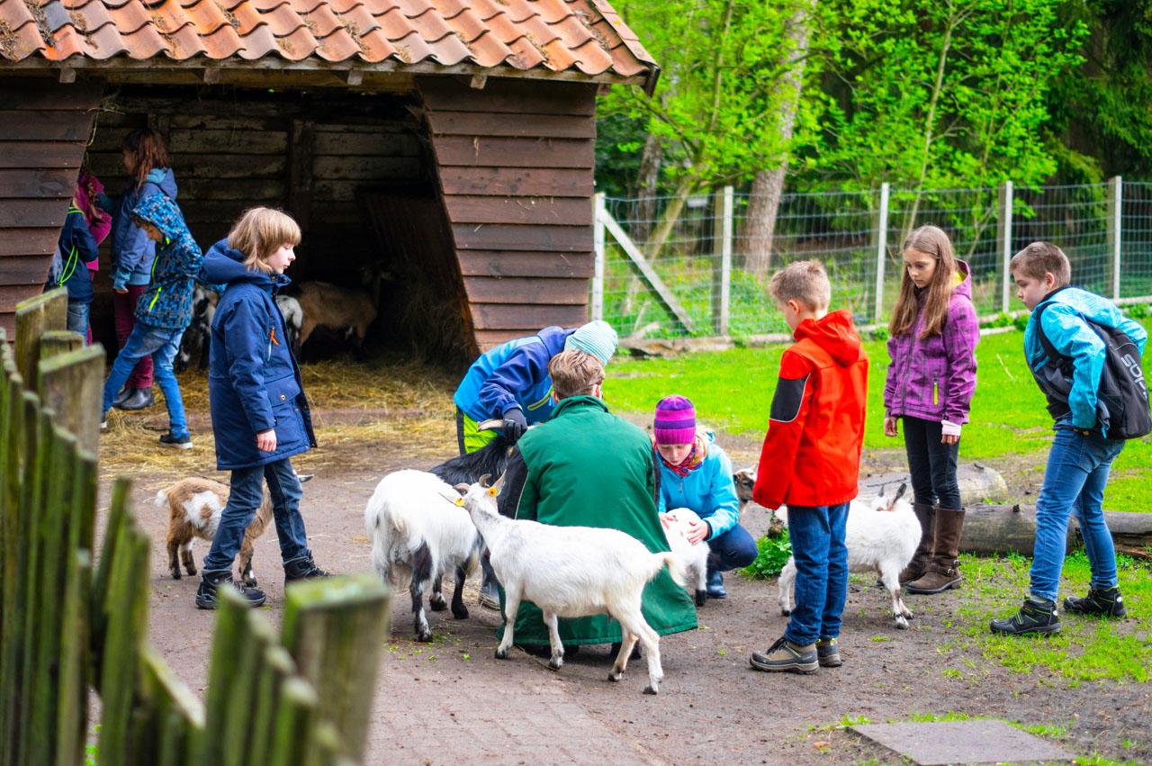 Ferienkurs Kleiner Tierpfleger