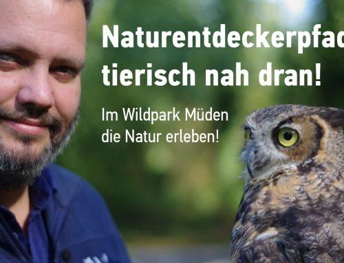 Naturentdeckerpfad für den Wildpark Müden