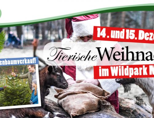 Tierische Weihnacht mit Weihnachtsbaumverkauf 2019