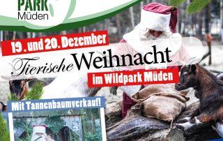 Tierische Weihnacht Wildpark Müden 2020