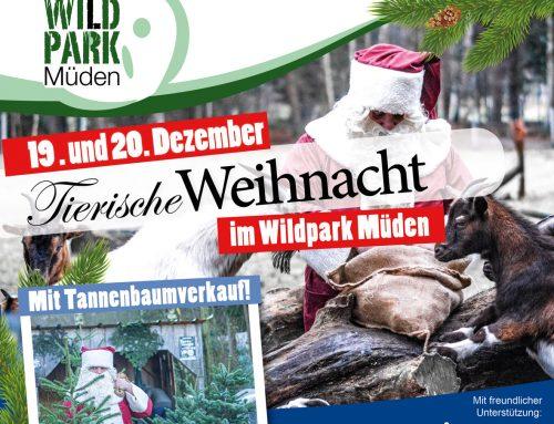 Tierische Weihnacht im Wildpark Müden am 19. und 20. Dezember 2020