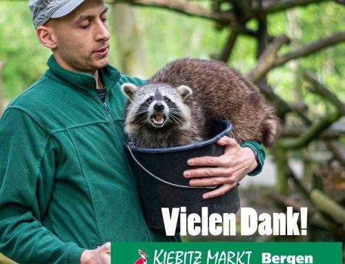 Kiebitzmarkt Bergen spendet die Dezember Futter-Rechnung