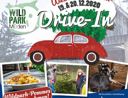 TANNENBAUM DRIVE-IN im Wildpark Müden am 19.& 20.12.2020
